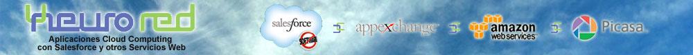 Aplicaciones Cloud Computing con Salesforce y otros Servicios Web